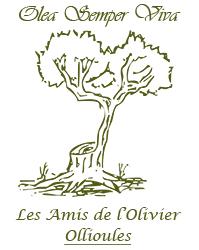 Les amis de l 39 olivier 83190 ollioules taille d 39 olivier greffe d 39 olivier lutte biologique - Taille de l olivier ...